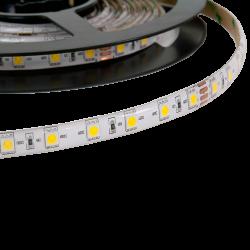 5m tira LED 12V 14.4W/m IP65