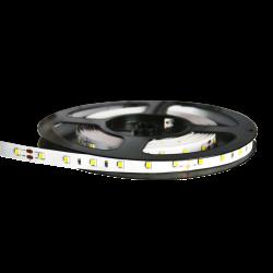 5m tira LED 12V 4.8W/m IP20